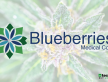 Blueberries Medical Corp..png