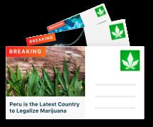 Technical420 | Marijuana News & Research