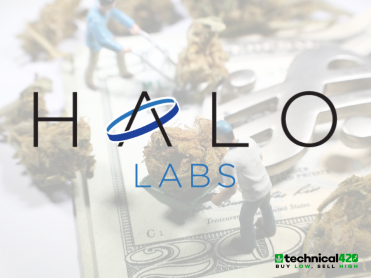 Halo Labs Continues To Break Revenue Records Month Over