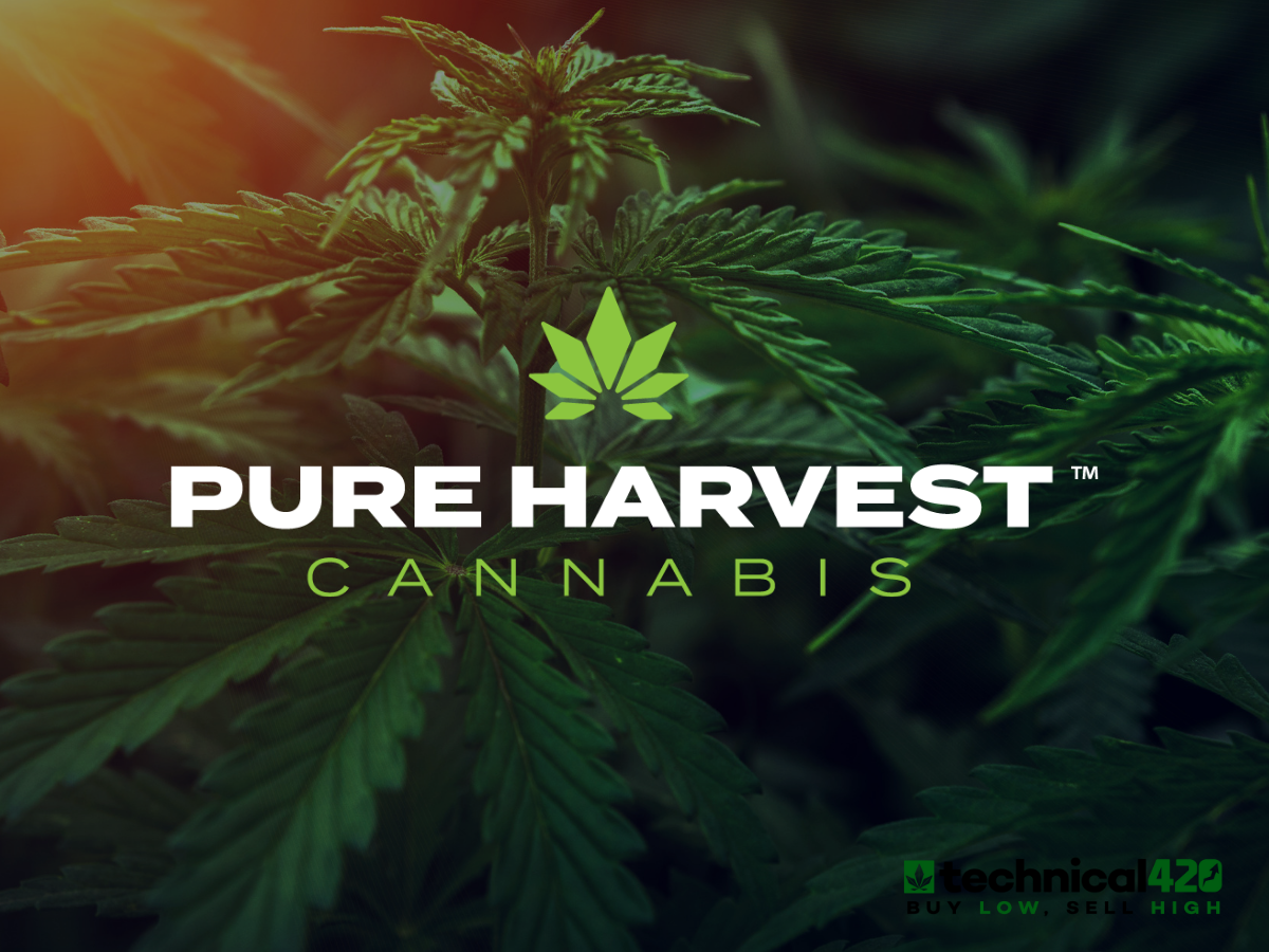 From The Ground Up pure harvest cannabis group is building a colorado cannabis